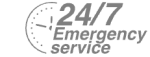 24/7 Emergency Service Pest Control in Romford, Rise Park, RM1. Call Now! 020 8166 9746